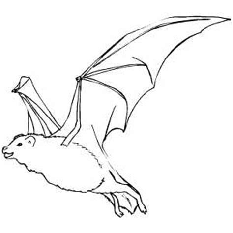 coloring page of a vire bat flying bat coloring sheet