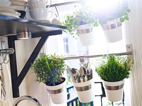 Small Kitchen Idea Nice Idea For Window Hang Small Planters My Home