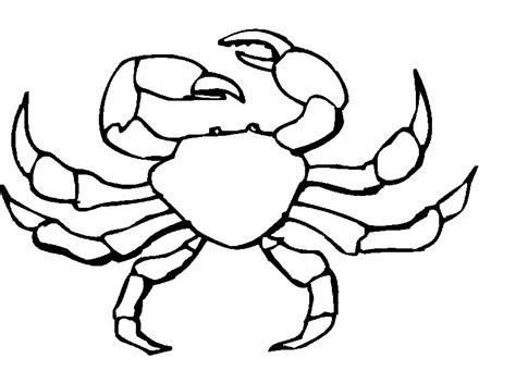 easy crab coloring page sand crab clipart 43