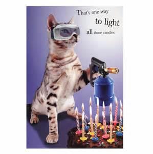 cat birthday card gangcraft net
