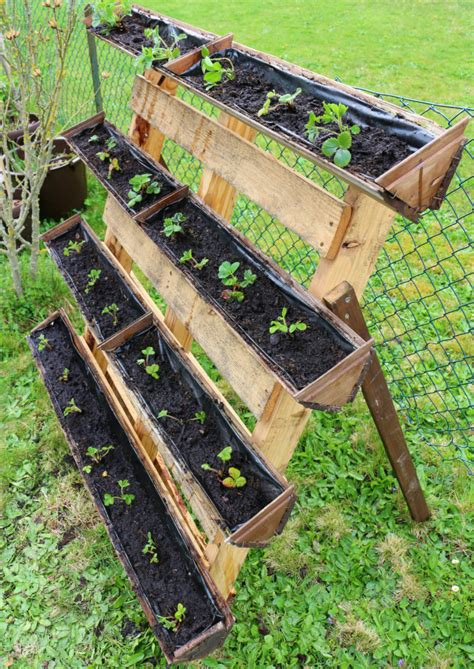 strawberry planter container gardening strawberry planter using pallet