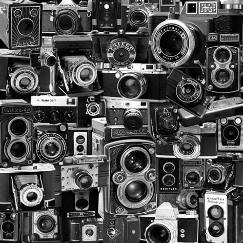 new wallpaper camera 17 best images about wallpapers on pinterest iphone 5