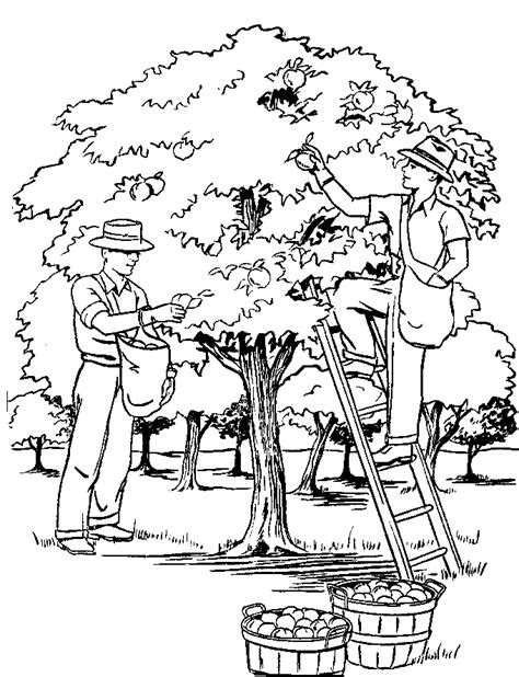 Scenery Tropical Pages Coloring Pages Scenery Coloring Pages