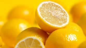 lemon photo lemon magic part 2 healthfood 187 day a dream