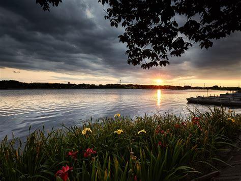 landscape river flowers dark clouds isanuma kawagoe shi