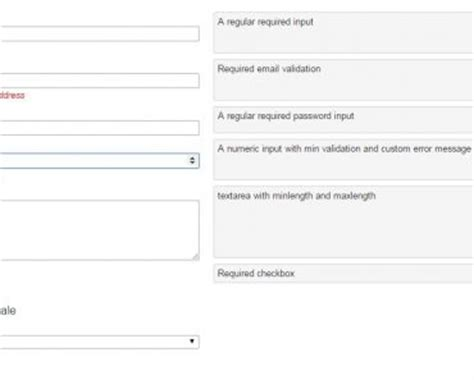 pattern validation angular global angular form validation directive angular script