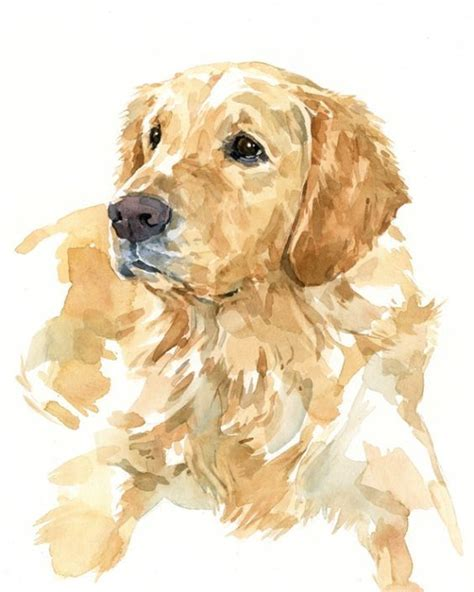 skin golden retriever 17 best ideas about skin tags on on removal of skin tags apple cider