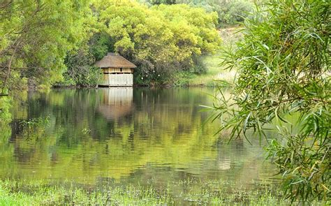 10 Top Rated Tourist Attractions In Bloemfontein Planetware Free Botanical Gardens