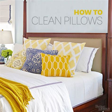the best way to clean your pillows two dogs sleep and