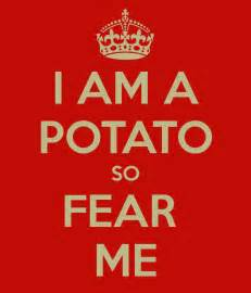Childrens Personalised Wall Stickers i am a potato so fear me keep calm and carry on image