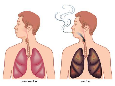 Better Smoke
