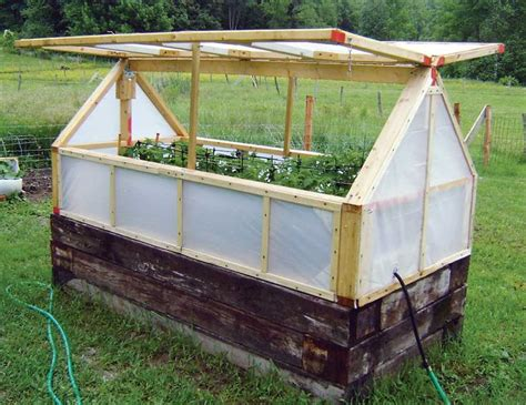 25 Best Ideas About Mini Greenhouse On Pinterest Mini Greenhouse Plans Free