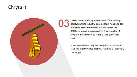 Metamorphosis Templates by Lifecycle Metamorphosis Diagram For Powerpoint Slidemodel