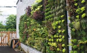 What To Plant In Vertical Garden 5 Innovative Vertical Garden Ideas To Make Your Garden
