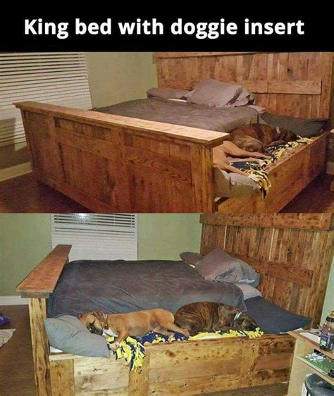 best way to get dog hair off comforter 25 best ideas about king size bedding on pinterest king
