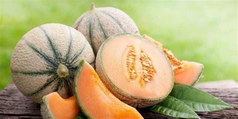 Alat Untuk Menyerut Buah Blewah kandungan dan manfaat buah blewah untuk kesehatan