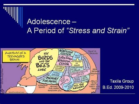 social challenge definition adolescence authorstream