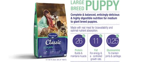 1st Choice Puppy Medium Large Breeds Food classic large breed puppy quality food montego pet