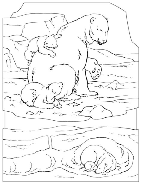 Polar Bear Color Page Az Coloring Pages Polar Color Page