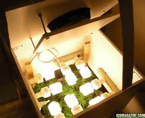 cfl grow light setup grow box done does it look like a spot for growing