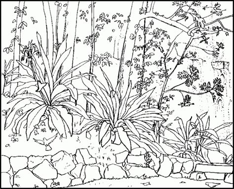 Printable Nature Coloring Pages For Kids Page Coloring Free Nature Coloring Pages