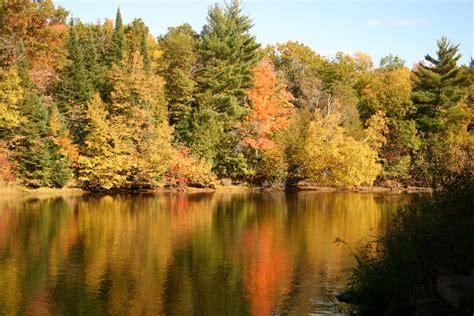 fall colors fall colors