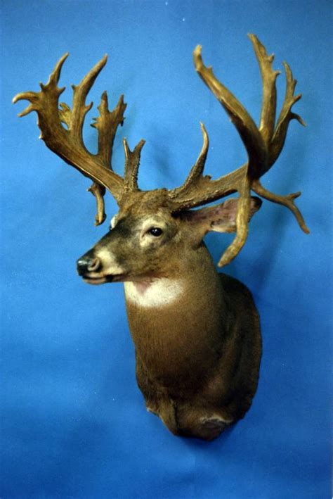 Records South Dakota 2014 World Record Whitetail Deer Book Covers