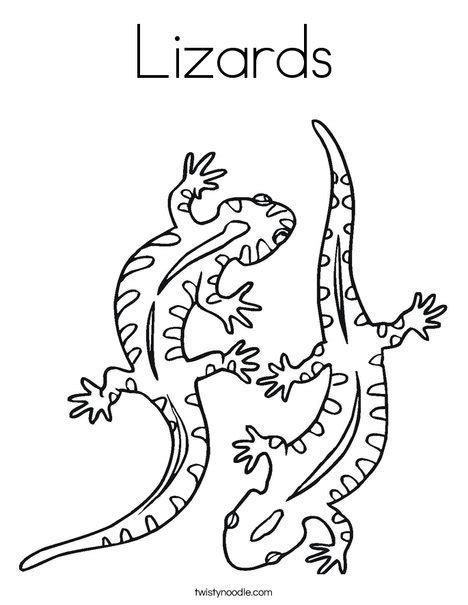 baby lizard coloring page lizards coloring page twisty noodle