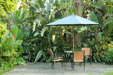 25 Beautiful Patio Design Ideas In Pictures Tropical Patio Design