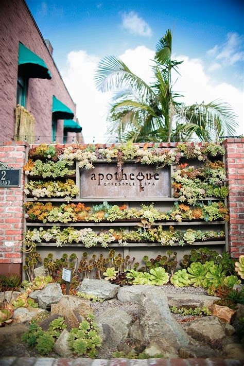 succulent cafe succulent garden pinterest succulent wall and succulents