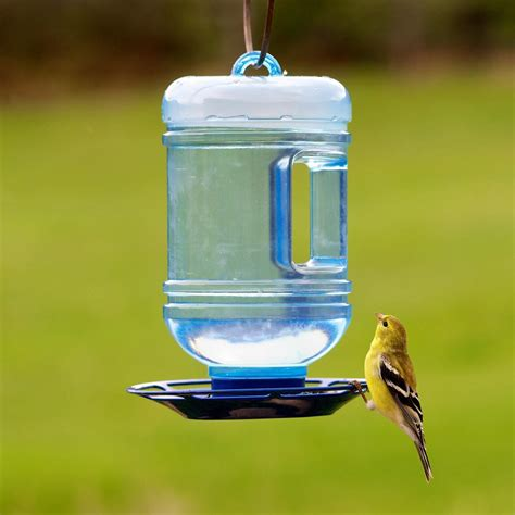 perky pet water cooler bird waterer amazon ca patio