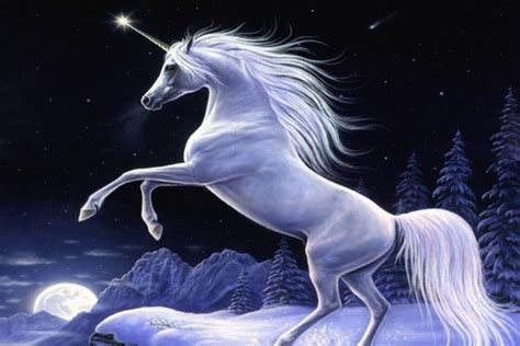 imagenes mitologicas top 10 mythical creatures that may have actually existed