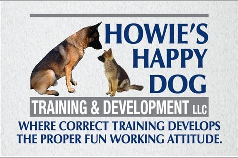 puppyhood a trained puppy a happy owner the howie s happy scoop it
