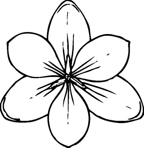 coloring flowers free flower coloring pages