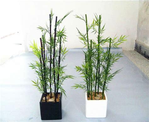 decoracion ca as bambu decoracion de interiores con plantas ca 241 as de bambu