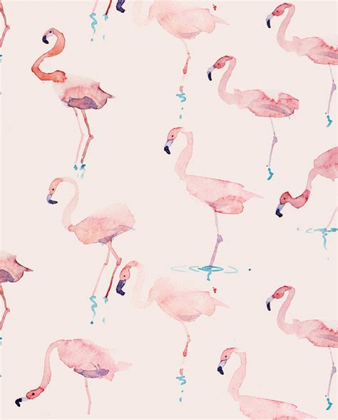 flamingo wallpaper eastenders flamingo wallpaper impremedia net
