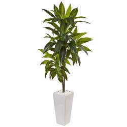 nearly indoor dracaena artificial plant in white