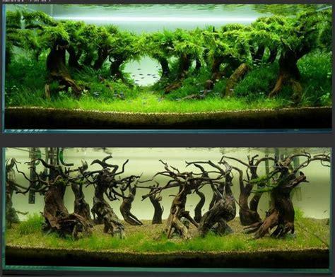 Aquascape How To by 100 Aquascape Ideas Aquariums Terrarium Vivariums