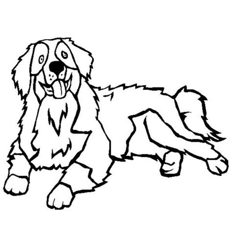 Mountain Dog Coloring Page | bernese mountain dog coloring pages berner love