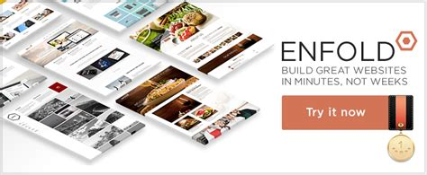 enfold theme not loading some of the best wordpress themes to use in 2016