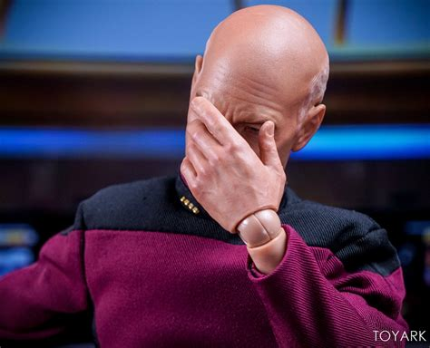 figure meme new captain picard is the figure of our memes nerdist