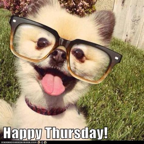 Thursday Meme - thursday animal meme pictures to pin on pinterest pinsdaddy
