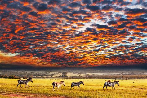 best national parks in the world 10 pictures of african sunsets we can t stop looking at