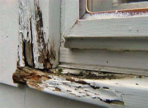 Fix Window Sill Window Repair Repair Rotted Window Sill