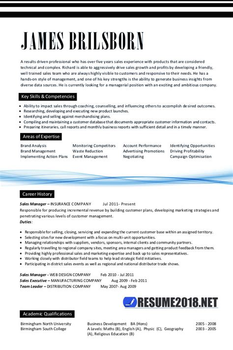 professional resume format 2018 how resume 2018 looks like resume templates 2018