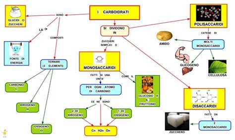 alimenti con zuccheri semplici i carboidrati mappa concettuale e riassunto studentville