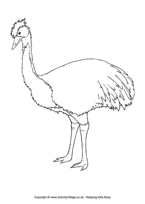 emu coloring page free emu colouring page 2