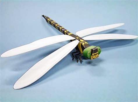 Dragonfly Paper Craft - dragonfly paper craft craftshady craftshady