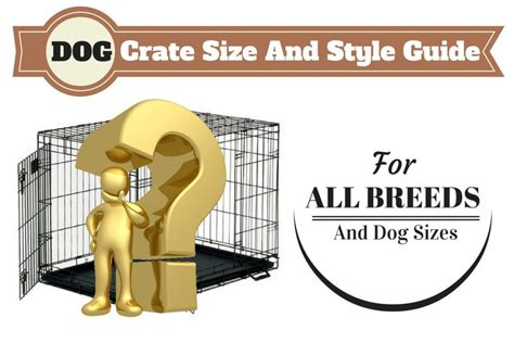 what size crate what size crate should you get and which type is best