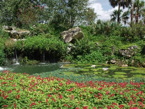 Kanapaha Botanical Garden Here Are 10 Of The Most Beautiful Gardens That Florida Has To Offer Tripstodiscover